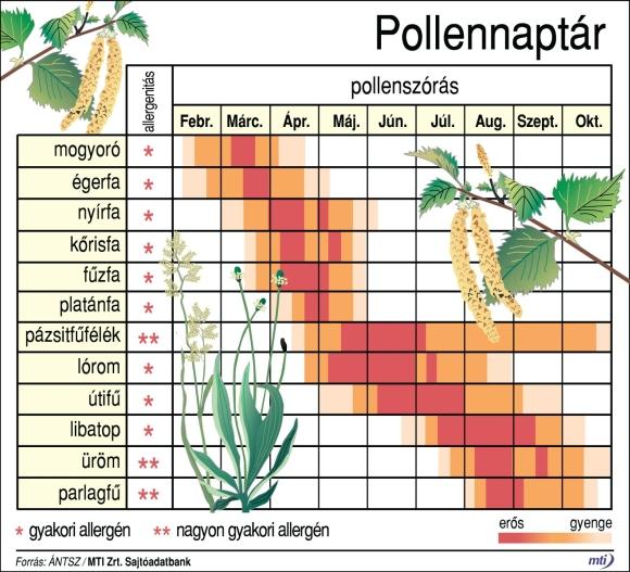 pollennaptár
